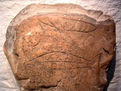 Pictish fish stone