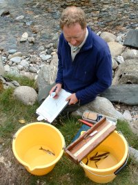 Recording details of anaesthetised juvenile salmon and trout