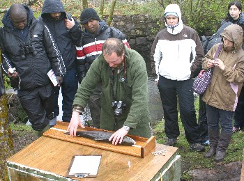 Ben Rushbrooke measuring the spring salmon taken at Tournaig on 6/5/09 (photo by Steve Kett)
