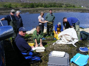 Sea trout processing team by the River Kanaird on 5th June 2012