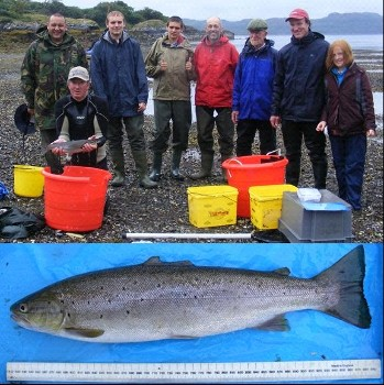 WRFT Biologist and volunteers after a successful sweep in Loch Gairloch; a recaptured sea trout