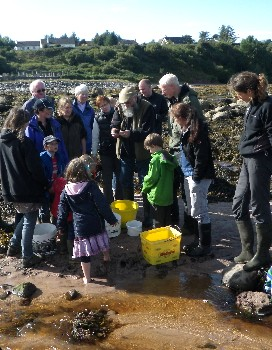 Countryside rangers organised a successful Highland Seashore day at Laide in September 2013